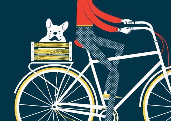 man on a bike ill.